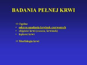 3. Morfologia cz. I