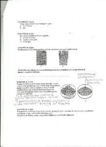 Cytologia i histologia 6