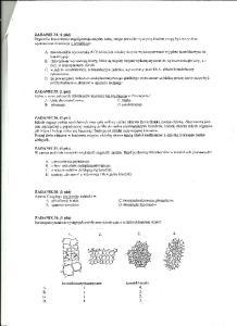 Cytologia i histologia 9