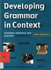 Devoloping Grammar In Context Intermediate