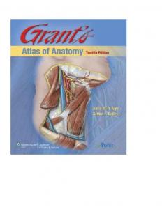 Grants Atlas of Anatomy 12th edition