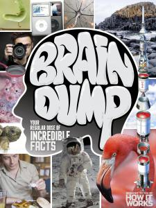 How It Works Brain Dump Issue 022 2014