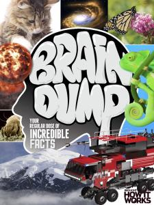 How It Works Brain Dump Issue 031 2016