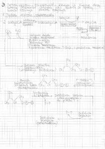Lipidy notatki ad.3