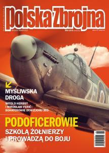 Polska Zbrojna 2015 08