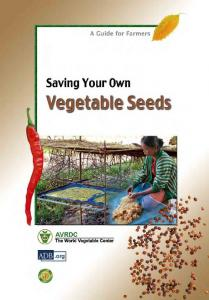 saving your own vegetable seeds